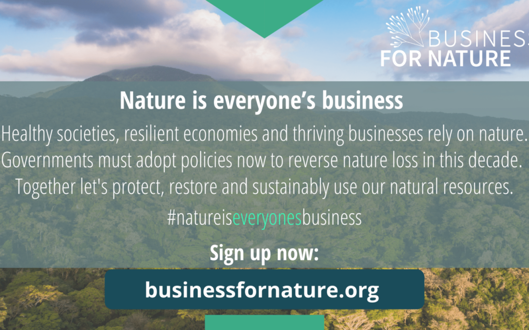 Call-to-action by Business for Nature